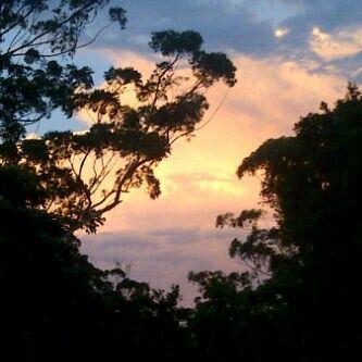 Willowvale #hometown #sunset