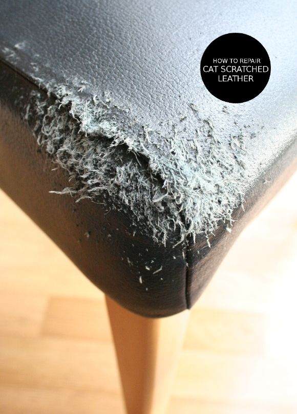 How To Repair Cat Scratched Leather Leather Restoration Leather