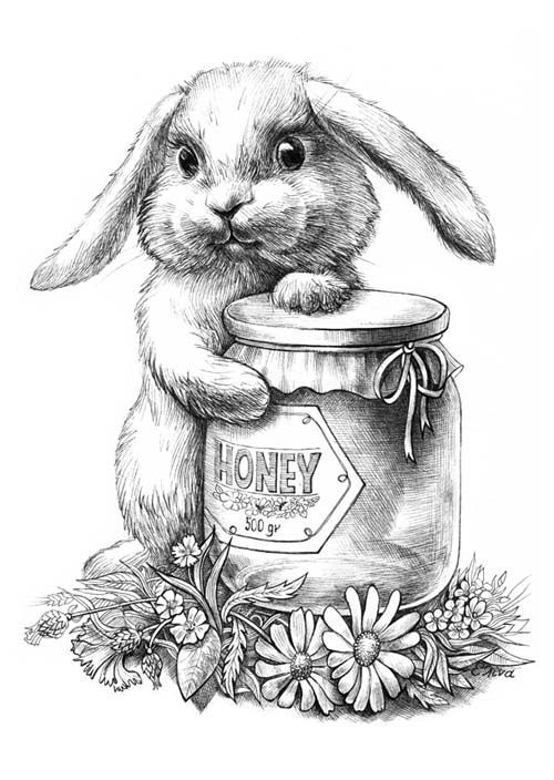 Harry The Bunny Coloring Pages - Inerletboo