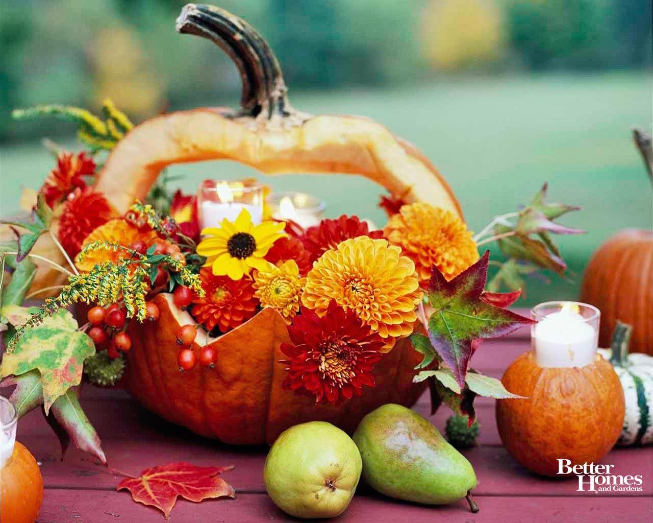 Autumn Pictures With Pumpkins For Desktop