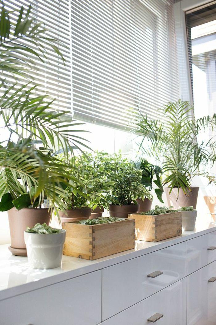 fensterbank deko die farben der natur durch pflanzen nach hause holen dekoration fenster. Black Bedroom Furniture Sets. Home Design Ideas