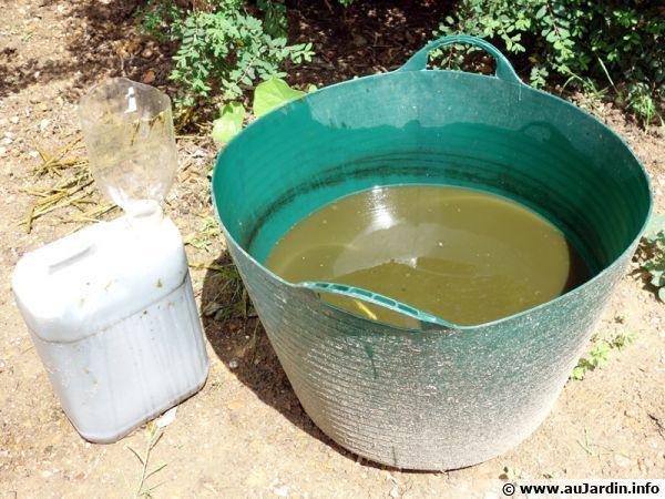 Les 25 meilleures id es de la cat gorie purin ortie sur pinterest insecticide engrais bio et - Purin d ortie utilisation ...