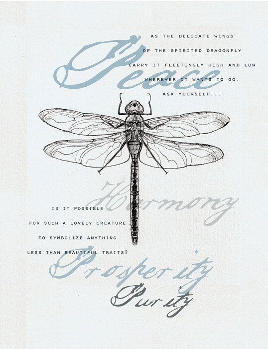 35 Dragonfly Symbolism Card Dragonflies Pinterest Dragonfly