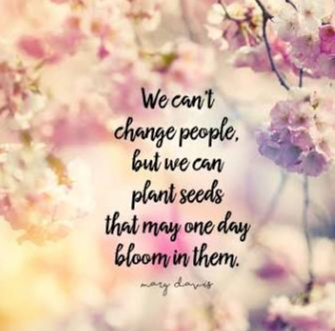 Quotes About Planting Seeds For Life We Can't Change People But We Can Plant Seeds That One Day Might