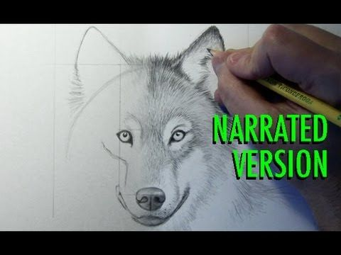How to draw a wolf narrated by mark crilley i recently how to draw a wolf narrated by mark crilley i recently completed this ccuart Image collections