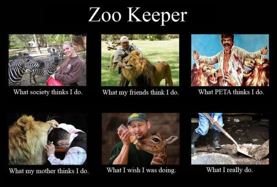 My life exactly Zoo keeper, Zoo, Zoo animals