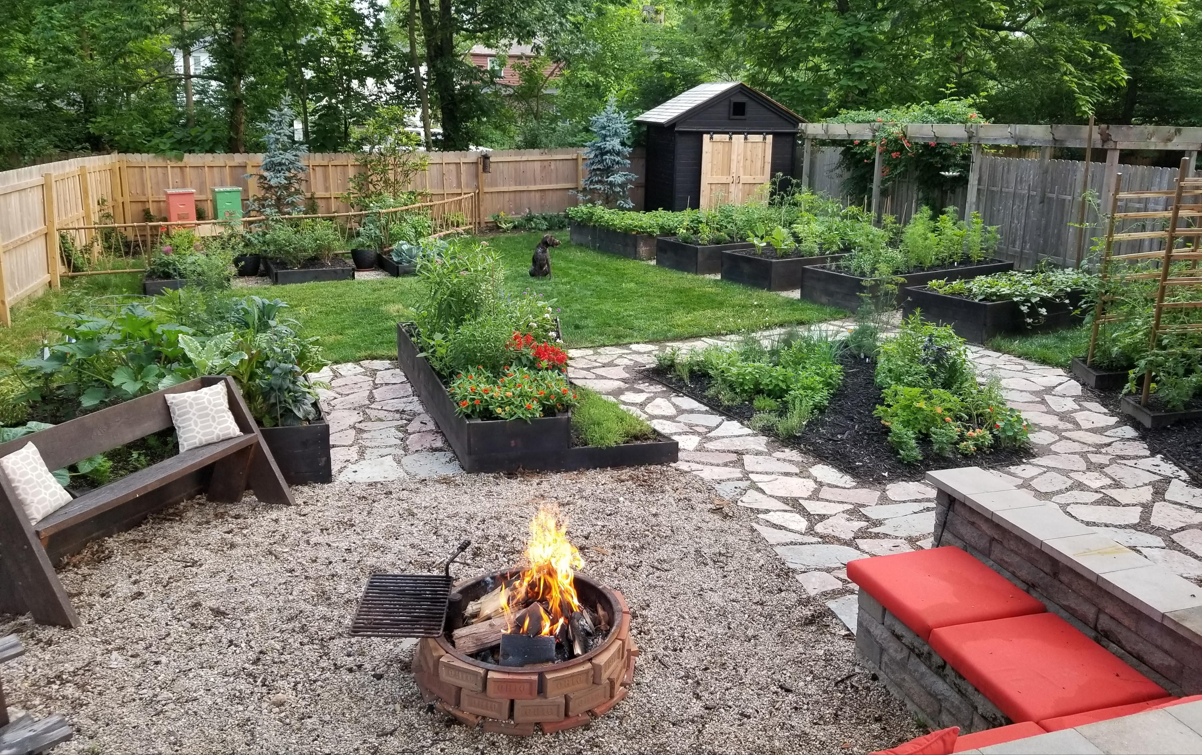 Beehives a shade garden and a new shed and I think my ... on My Backyard Living id=74856
