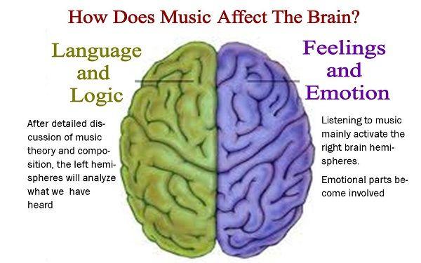 How Does Music Affect The Brain?   Music   Pinterest   Brain