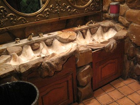 Giant Clam Shell Sink Google Search Seashells Giant