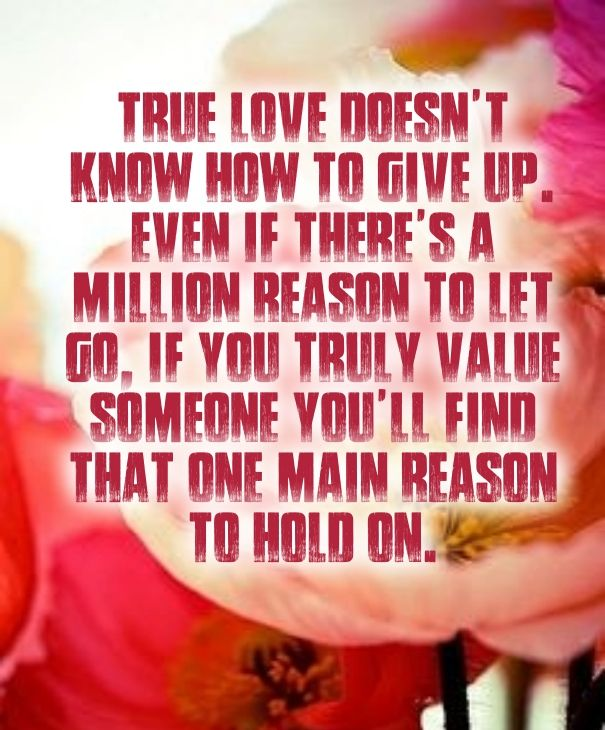 Never Give Up On Love Quotes Fav Memes Pinterest Citacoes
