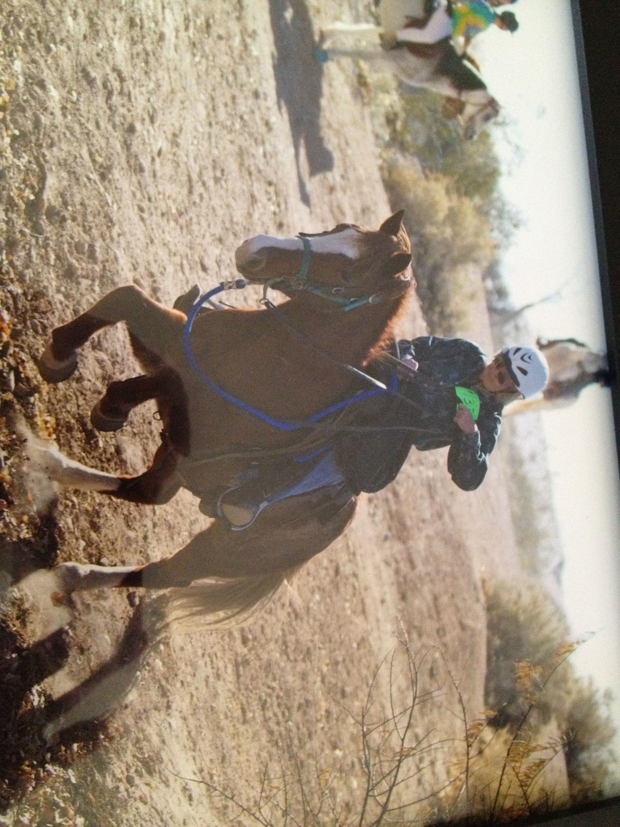 #ActionRider Helen Josey, tearing up the trails! #trailriding #horseriding #horses #barnlife