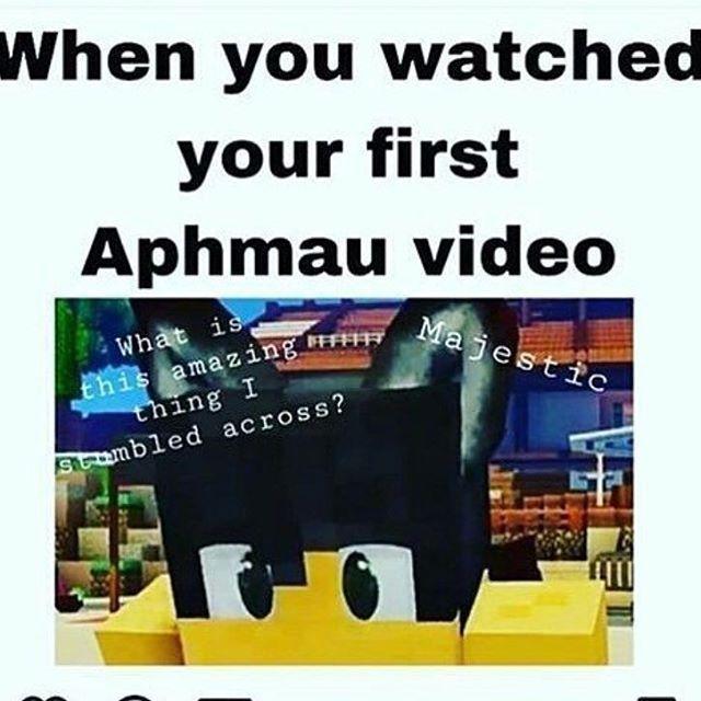 Aphmau Memes Aphmaumemes Memes Aphmau Aphmau Aphmau Memes Aphmau Youtube
