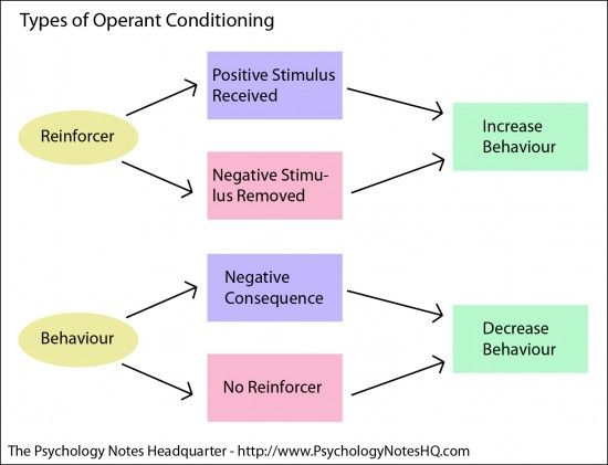 understanding operant conditioning Operant conditioning is a type of learning where behavior is controlled by consequences key concepts in operant conditioning are positive reinforcement, negative reinforcement, positive punishment and negative punishment.