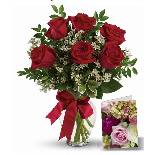 Bunch Of 6 Red Roses With White Filler And Ribbon With Full Size Greeting Card Flowers Delivered Flower Delivery Online Flower Delivery
