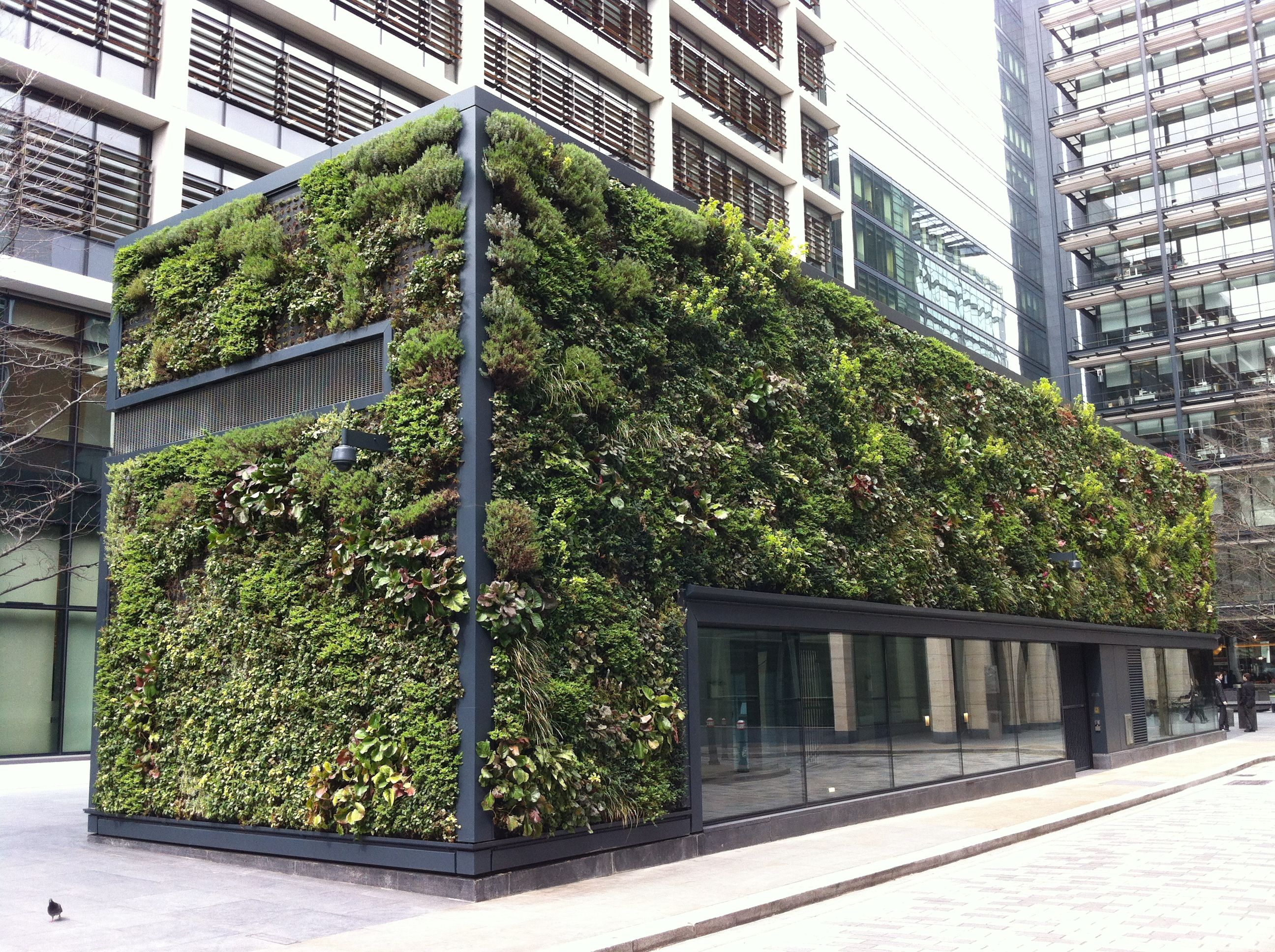 Building in new square london covered with plants using - How to build a living wall ...