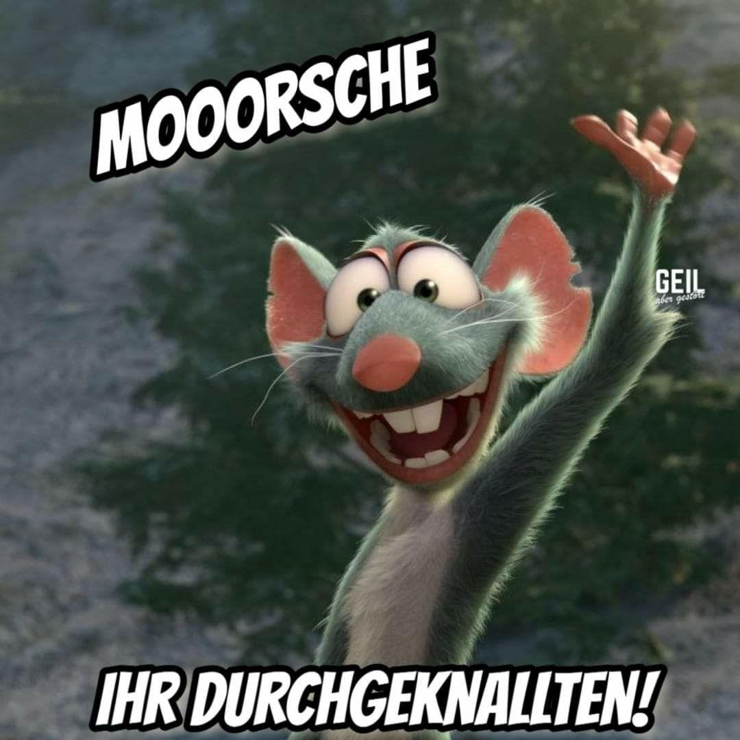 Pin Von Siwi Auf Smile Guten Morgen Lustig Lustige Guten