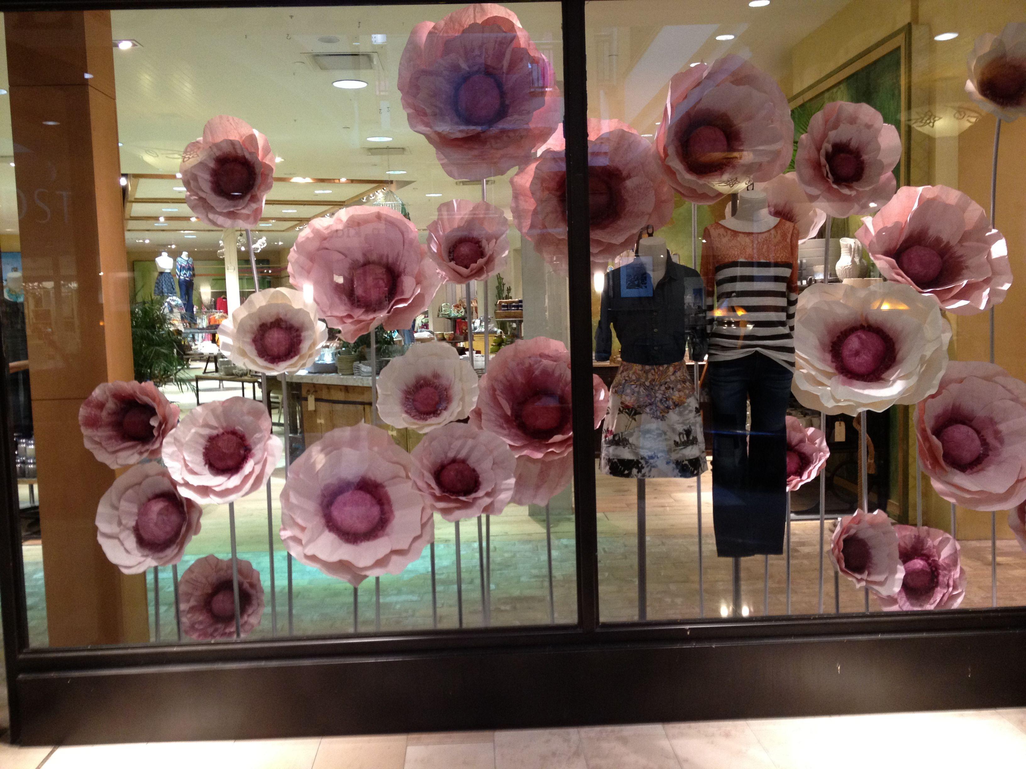 Huge Poppies Display Spring Window Display Window Display