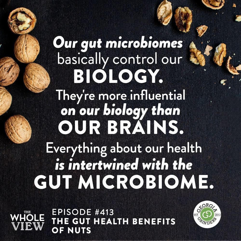 Twv Podcast Episode 413 The Gut Health Benefits Of Nuts The Paleo Mom Gut Health Microbiome Health