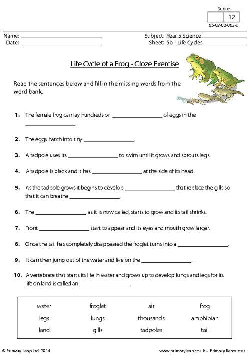 PrimaryLeap.co.uk - Life Cycle of a Frog - Cloze Exercise ...