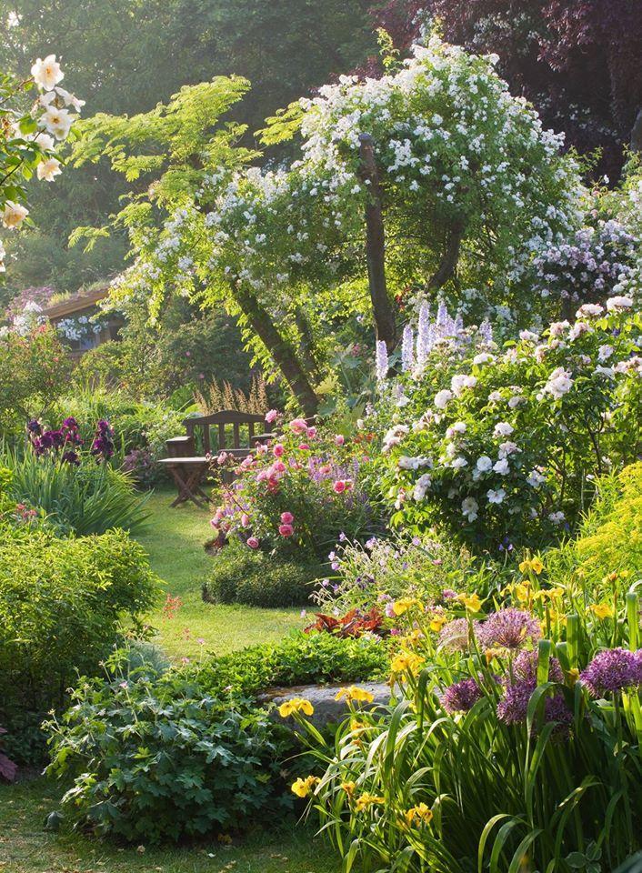 40 inspirations pour un jardin anglais | Garten Ideen | Pinterest ...