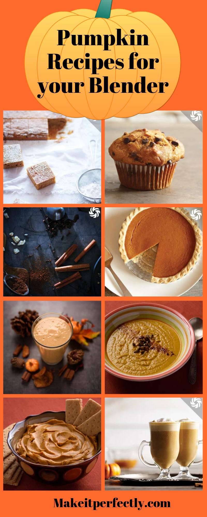 Check out these great Blender Pumpkin Recipes! Use your