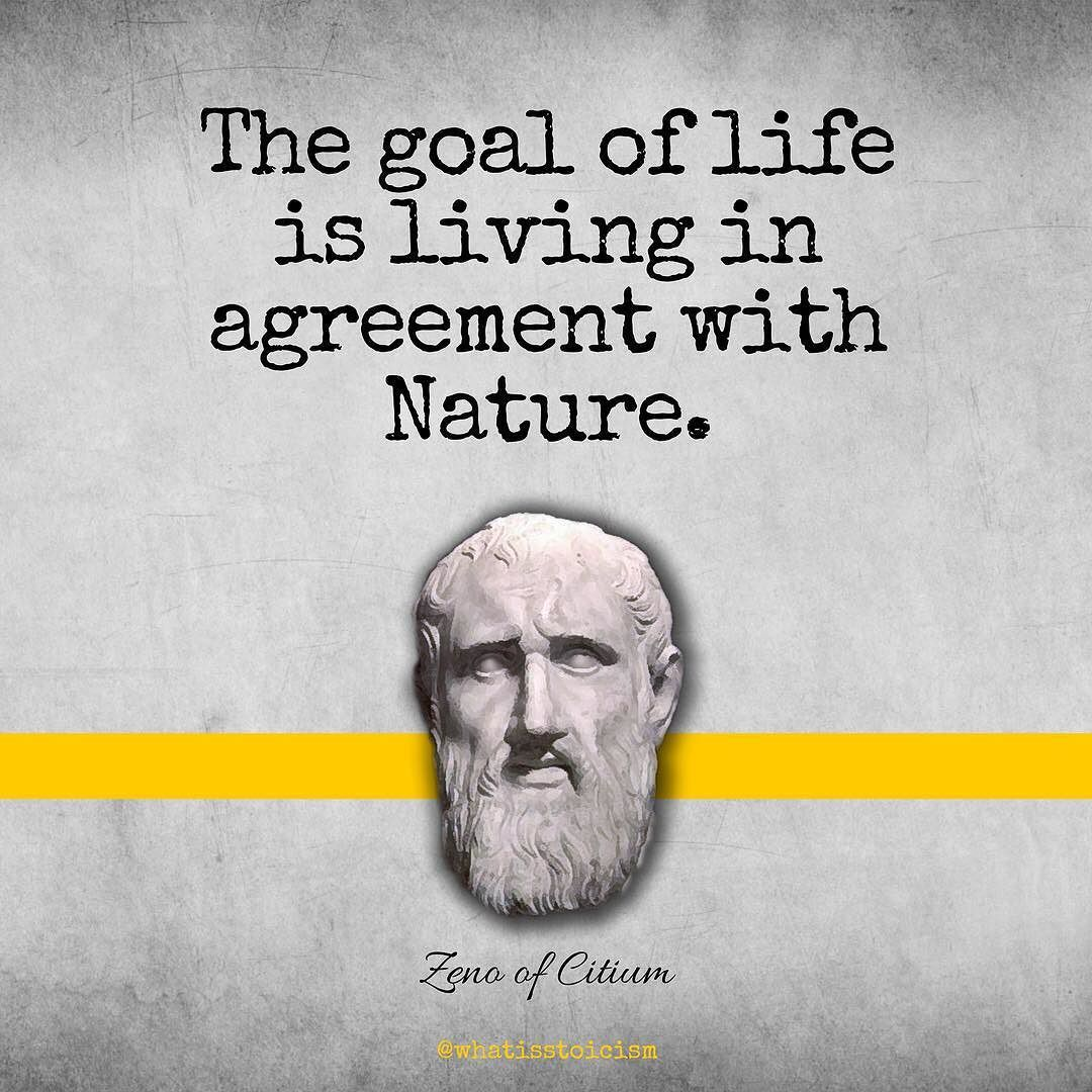 If You Re Interested In The Background Of The Founder Of Stoicism Check Out The Link My Bio For Details On Zeno School Of Philosophy Wisdom Quotes Great Quotes