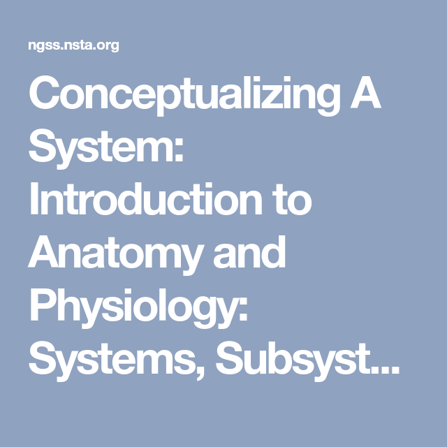 Conceptualizing A System: Introduction to Anatomy and Physiology ...