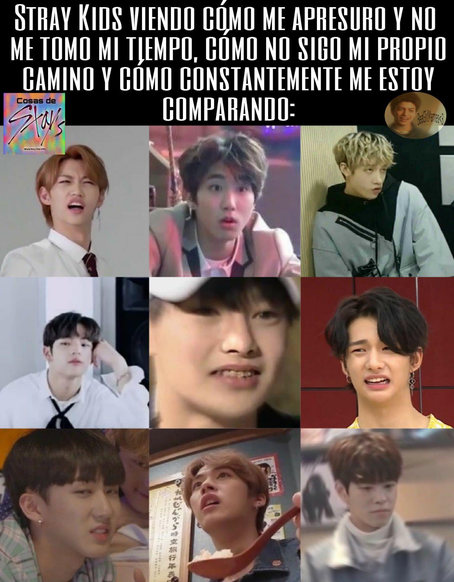 Memes De Stray Kids En 2020 Memes Memes Coreanos Memes Kpop