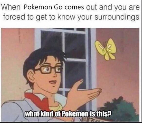 Top 10 Best Pokémon GO Memes So Far