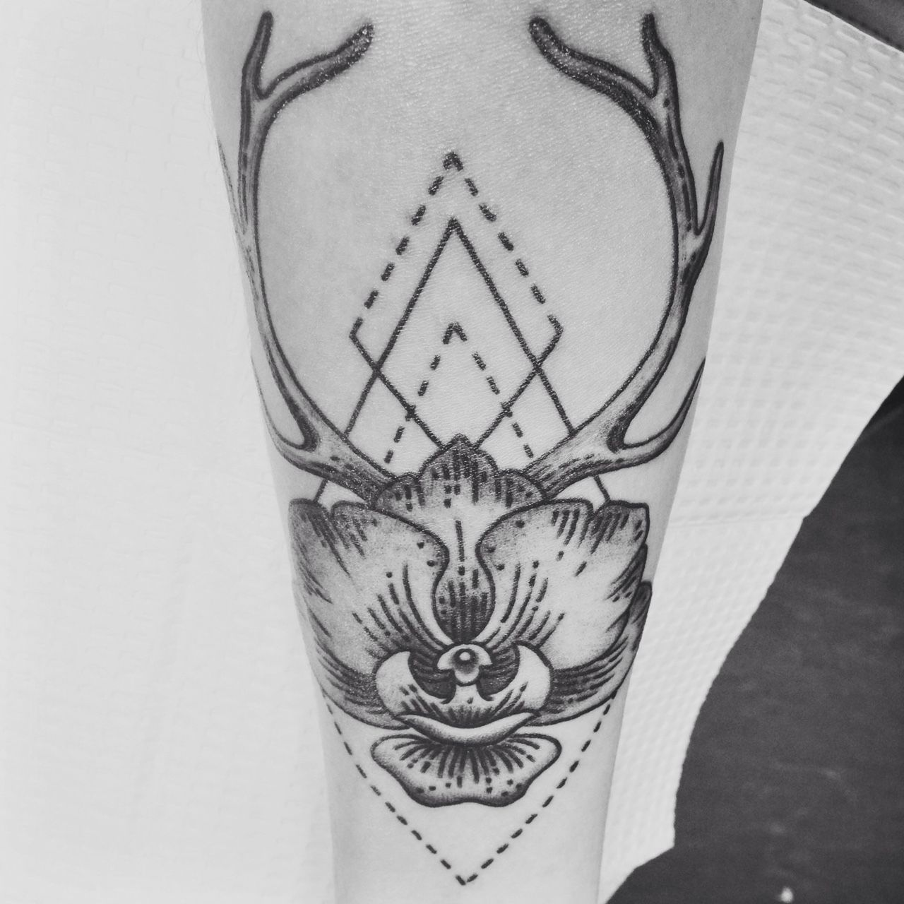 An orchid and deer antlers reminders of home done by shawn farrell