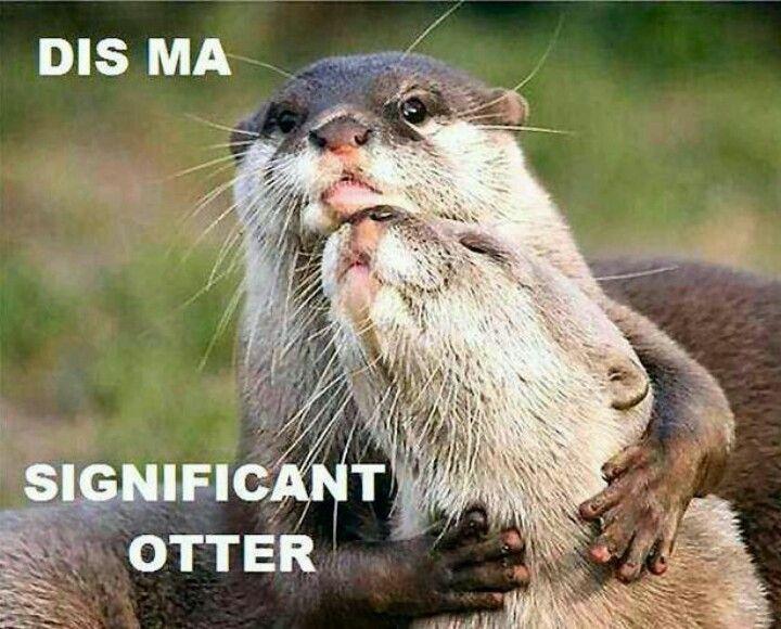 """I love you like no """"otter""""..."""