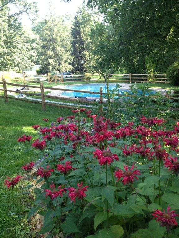 West Chester Vacation Rental VRBO 350443 1 BR