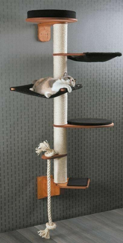 Cat Room, Wall Mounted Cat Furniture Uk