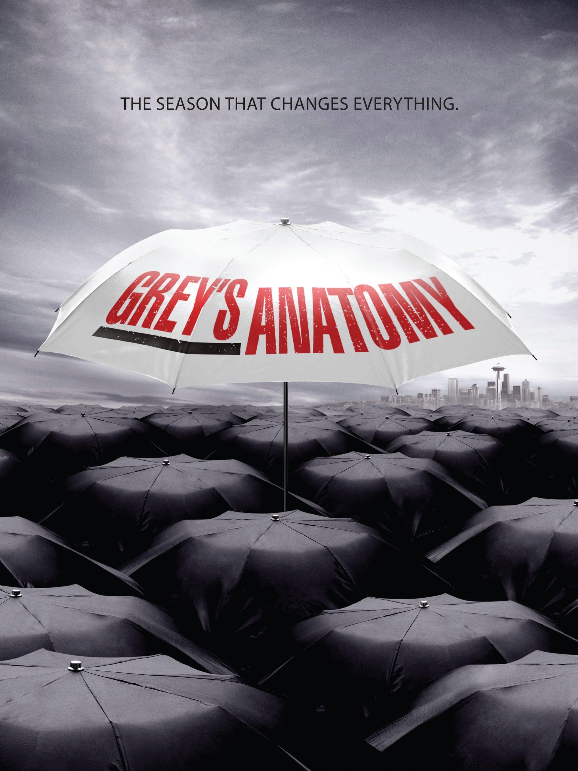 Grey S Anatomy Greys Anatomy Grey S Anatomy Anatomia De Grey