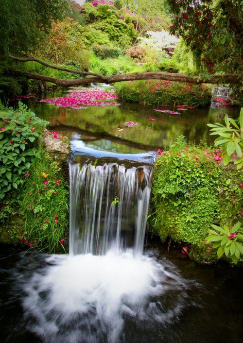 Beautiful stream and water fall Waterfall Pool, Devon, England (1