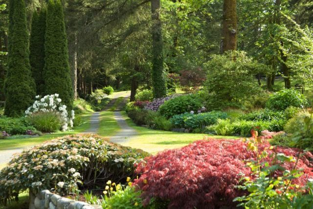 Garden Design Creative Combinations in Canada is part of Shade garden Canada - Garden inspiration from across the world  These Canadian gardeners built on the shoulders of giants at their beautiful property  The creative combinations and design of their property is inspiration enough