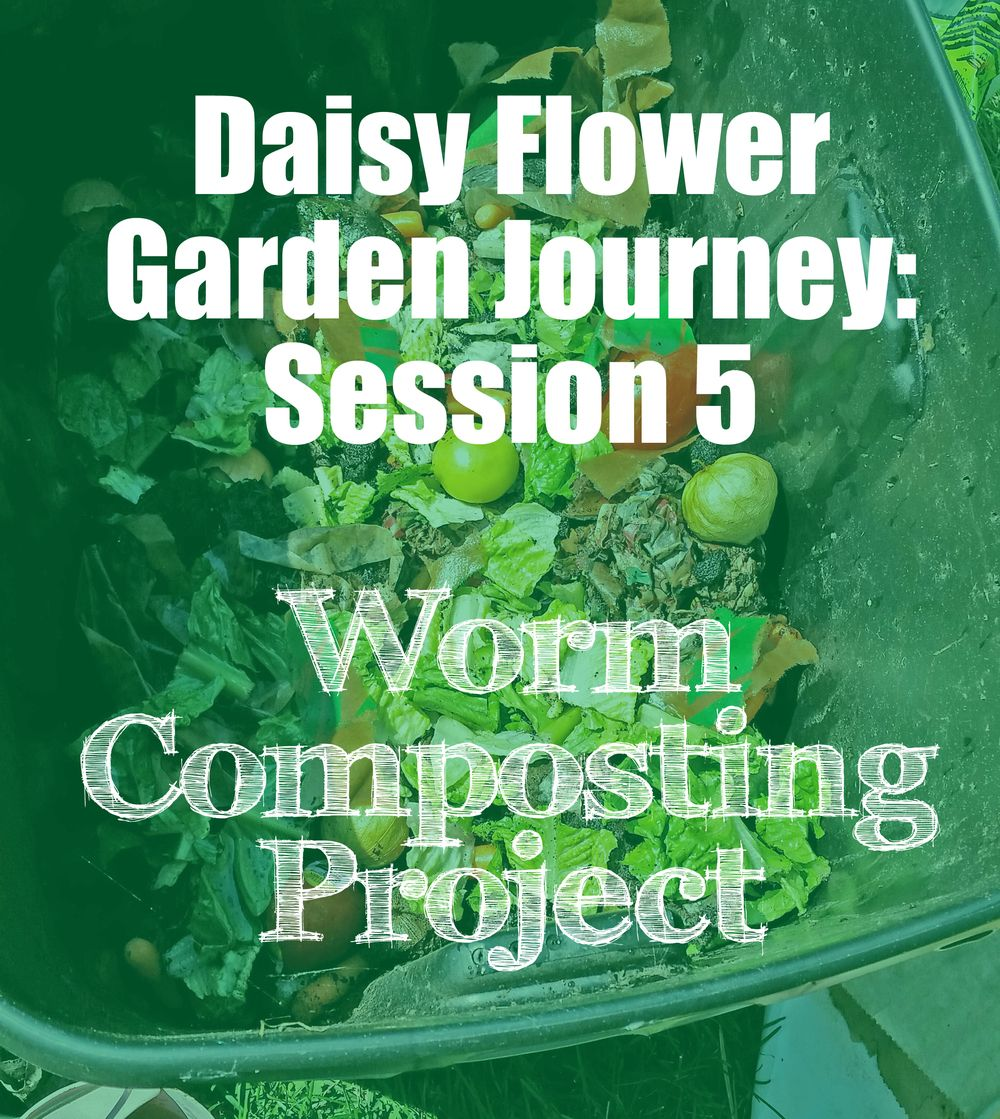 daisy flower garden journey: session 5 take action project | daisies