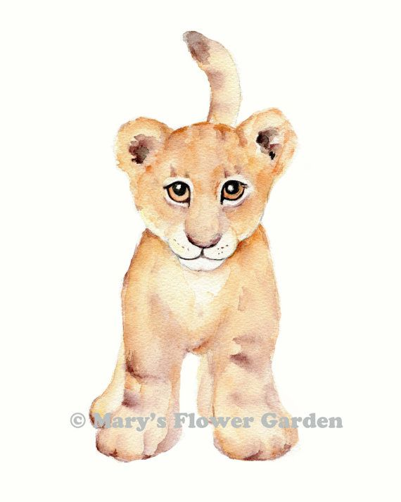Safari Nursery decor/ nursery wall art- Set of four baby animal ...