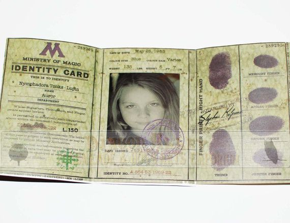 Harry Potter Wizard Id Booklet From The Ministry Of Magi Harry Potter Props Harry Potter Classroom Harry Potter 5