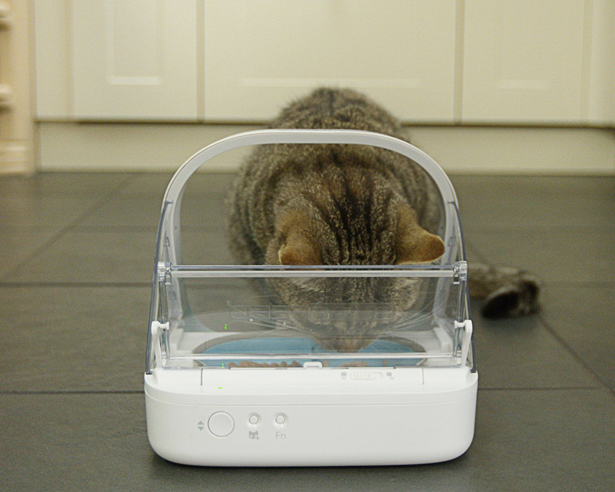 SureFeed Microchip Pet Feeder Pet Supplies