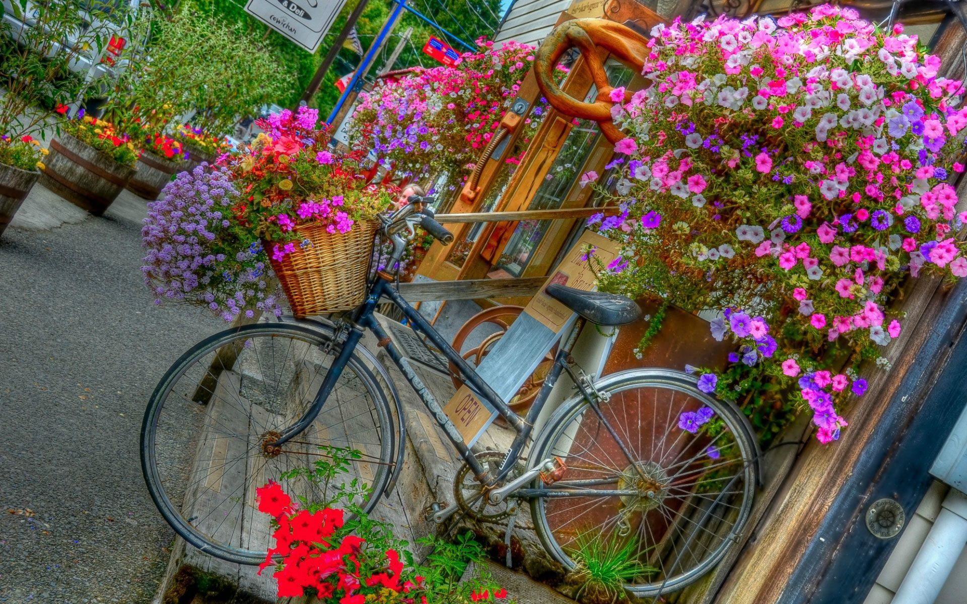 Girl Boy Flower Bicycle Hd Beautiful Wallpapers Smart Garden Bicycle Pictures Old Bicycle