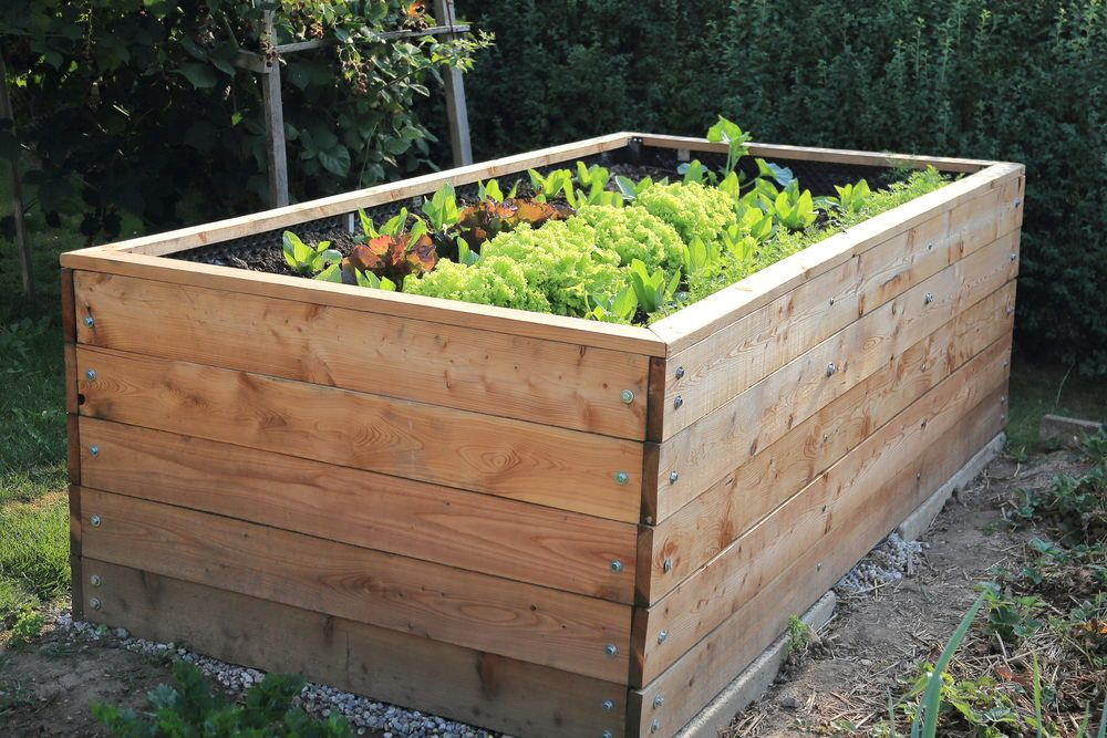 32 Raised Wooden Garden Bed Designs Examples With Images Raised Garden Garden Beds Raised Garden Beds