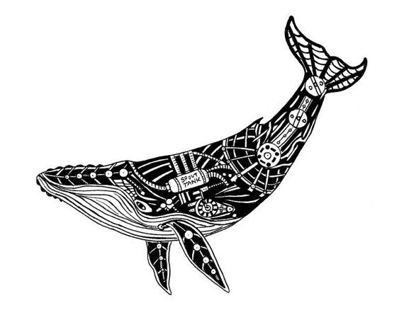 Humpback Whale Line Drawing : Mechanical humpback whale but not