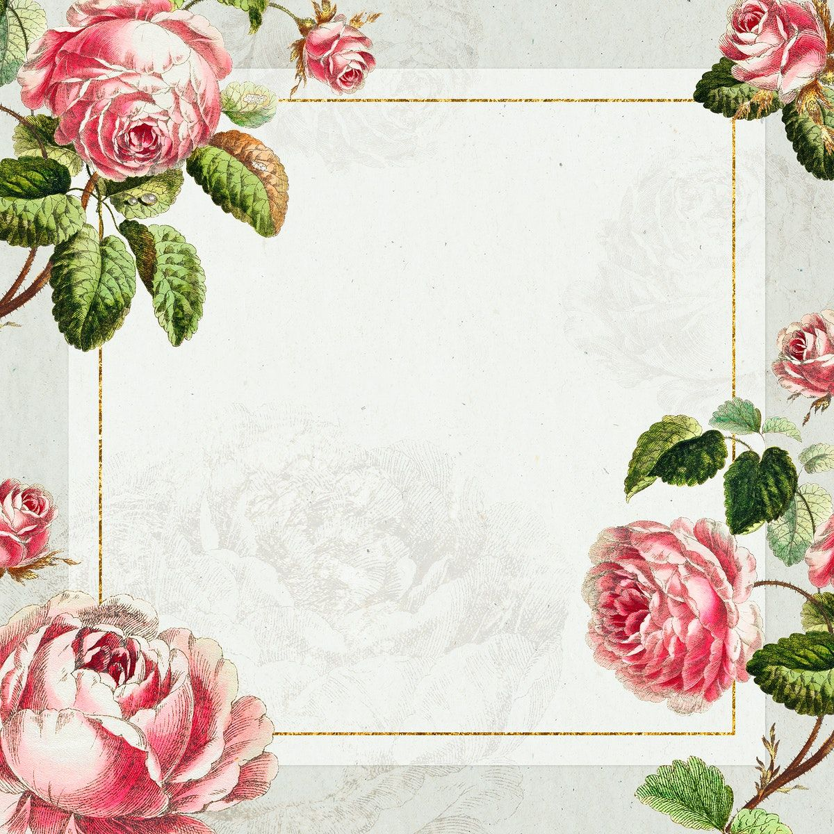 Download Premium Illustration Of Vintage Pink Rose Flower Frame Design In 2020 Flower Frame Pink Rose Flower Pink Background