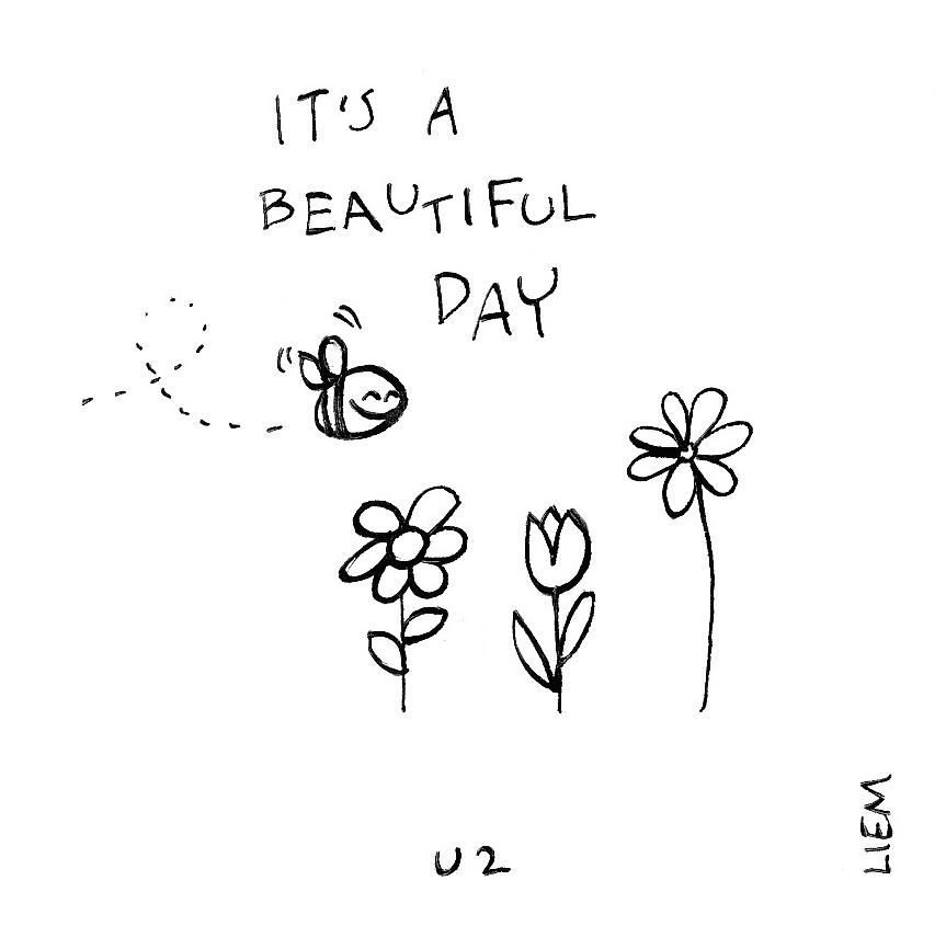U2. Beautiful Day. 365 illustrated lyrics project