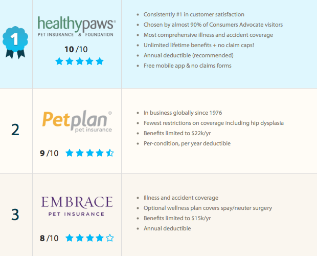 Critical To Protect Your Pet And Wallet Pet Insurance With