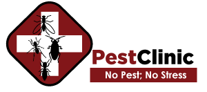 Pest Control Singapore Pest Control Services Places To Visit How To Stay Healthy League Of Legends Elo