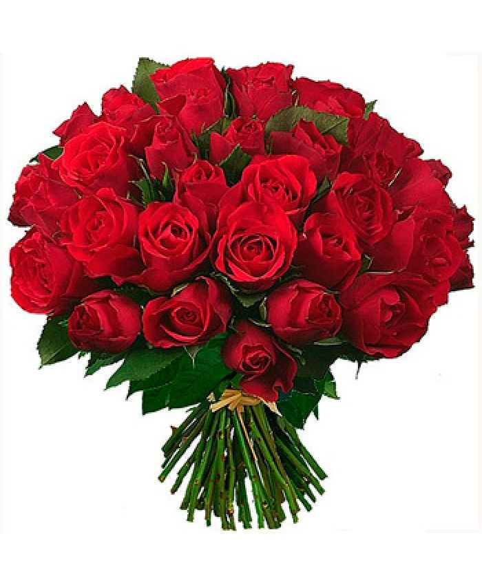 Pin By Rockers Inc On Online Flower Delivery Pinterest Flowers