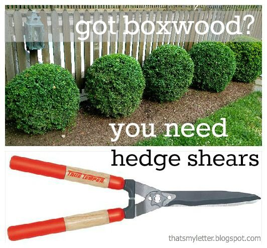 H Is For Hedge Shears Hedges Hedge Shears Big Garden