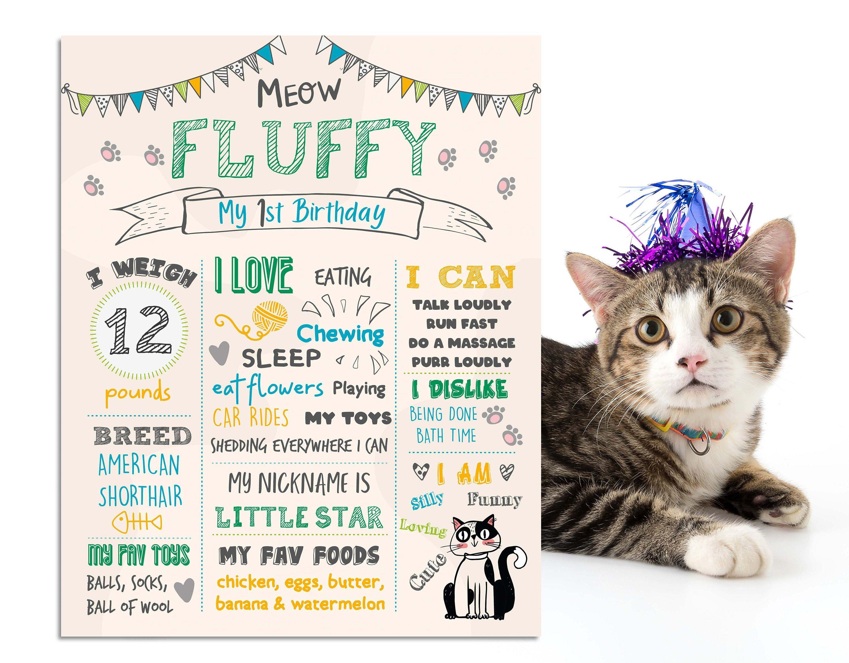 Cat Birthday Chalkboard Kitty Birthday Pet 1st Birthday Etsy Cat Birthday Kitten Birthday Birthday Chalkboard